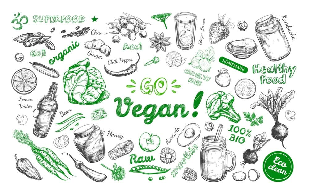 Things You Need to Know Before Going Vegan