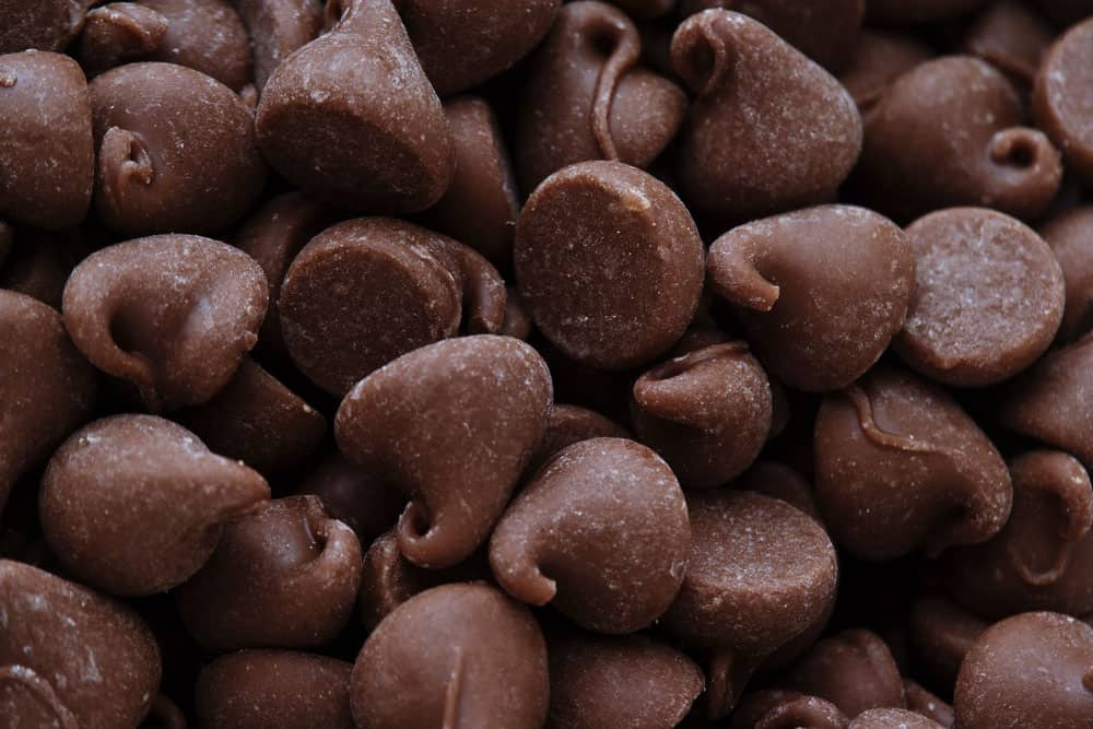 Best Vegan Choco Chip