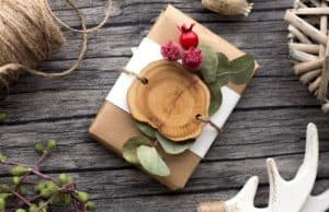 Best Vegan Gift ideas