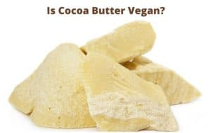 is cocoa vegan - Is Cocoa Butter Vegan