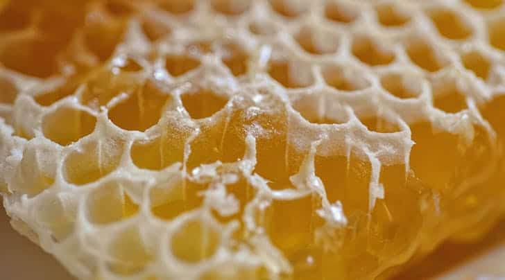 beeswax for cosmetics