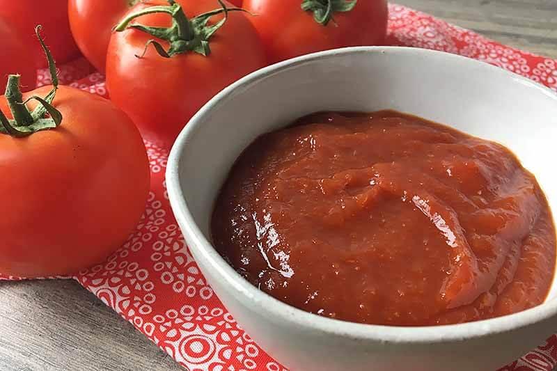 is heinz ketchup vegan