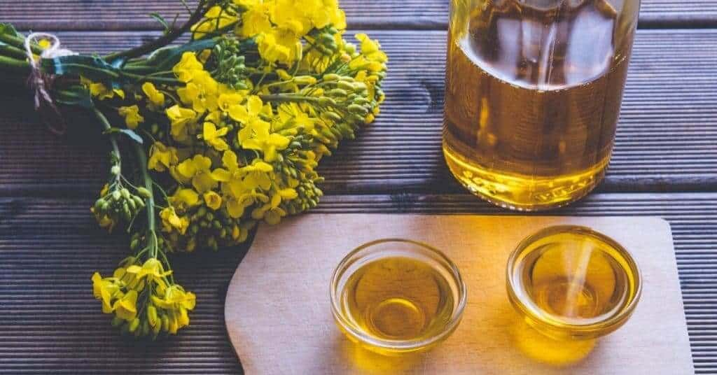 how long is canola oil good for