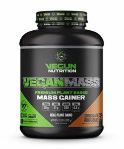 Best Vegan Weight Gainers