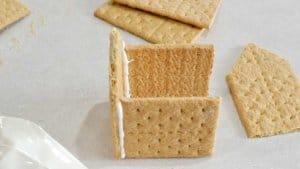 Are Graham Crackers Vegan