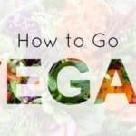 How to Go Vegan – A Complete Veganism Guide