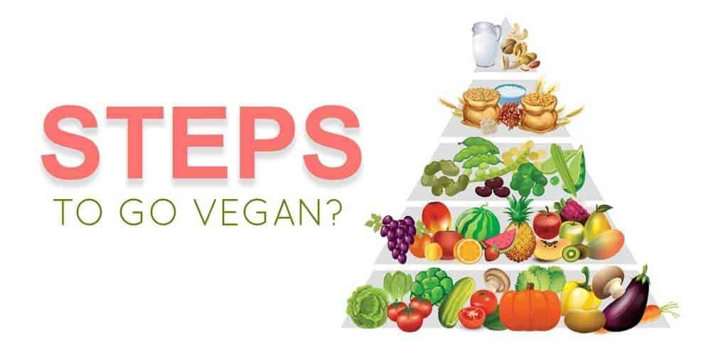 Steps to go Vegan - how to go vegan overnight