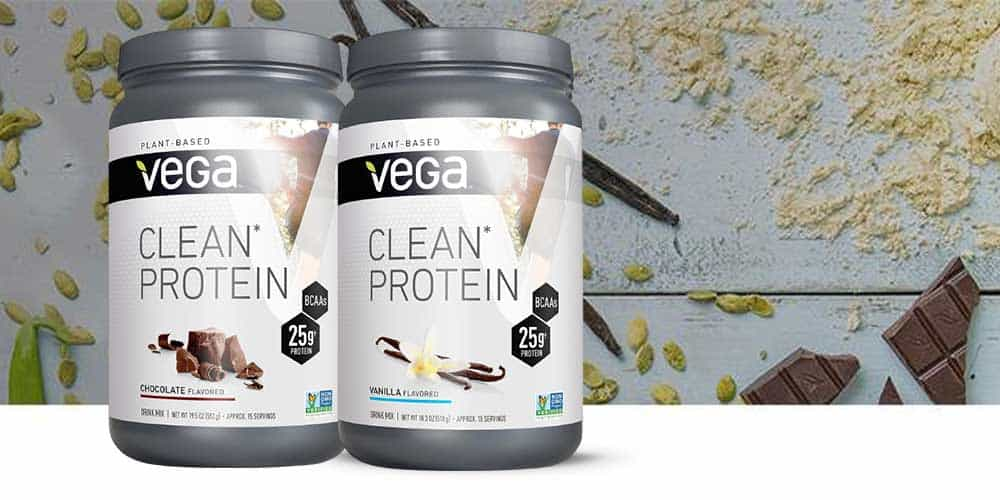 Vega Clean Protein Reviews
