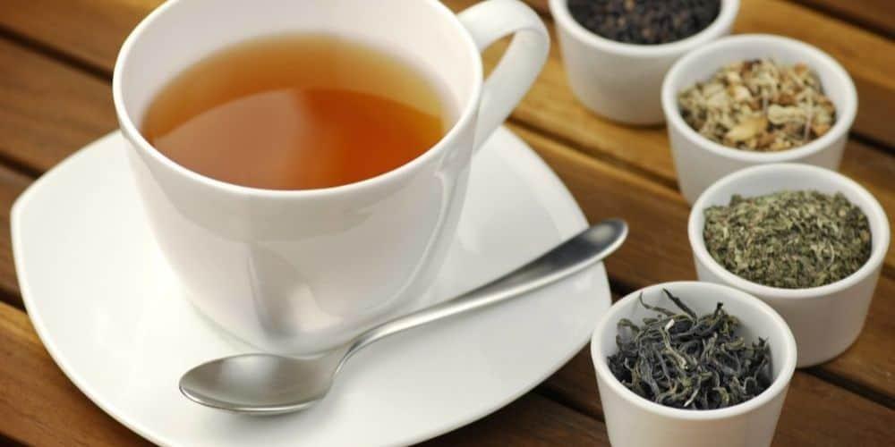 matefit detox tea review