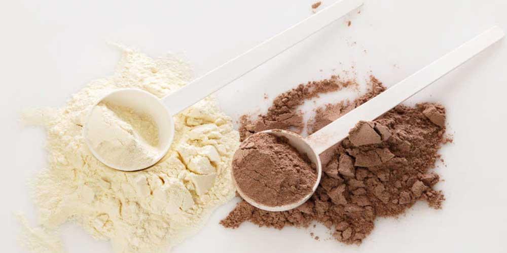 Whey VS Plant-Based Protein Powder