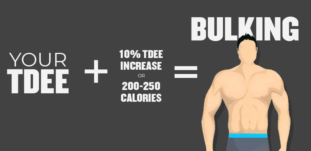 Calorie Intake For Bulking