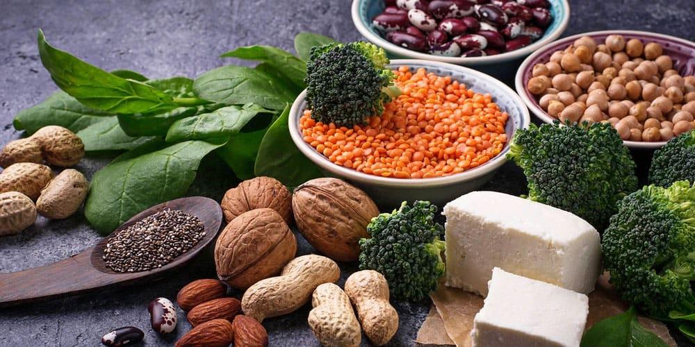 Vegan Bodybuilding Meal Plan Protein Sources