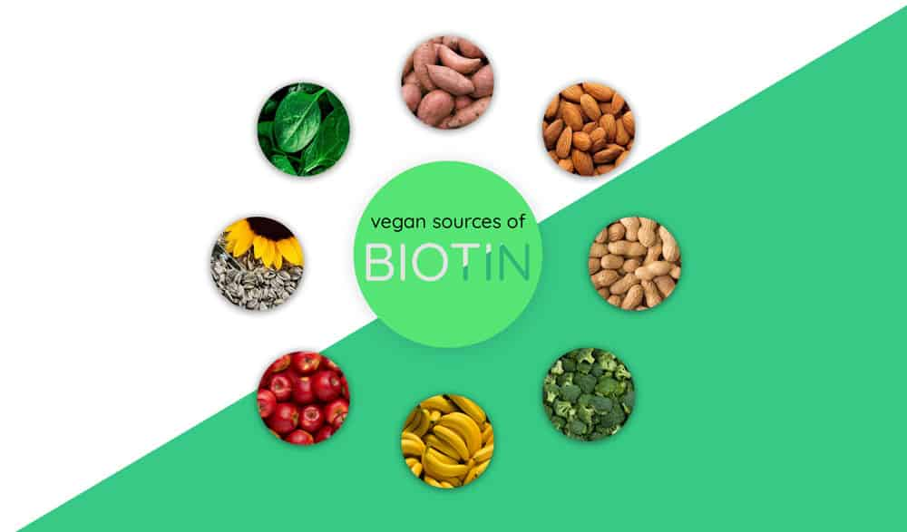 Vegan Sources of Biotin