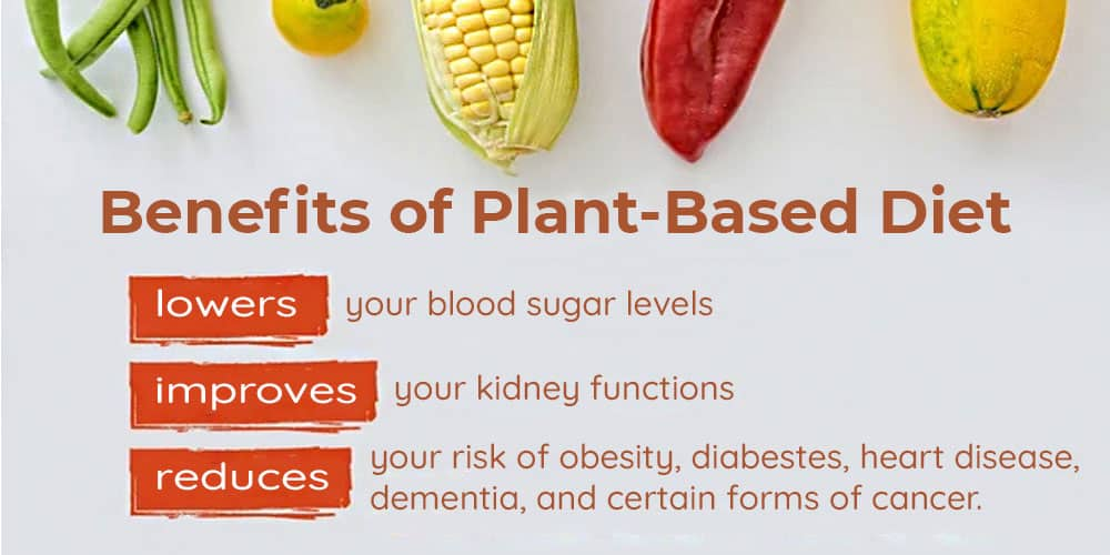 Benefits of the Plant-based Diet