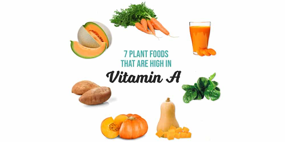 Vitamin A in a Plant-Based Diet