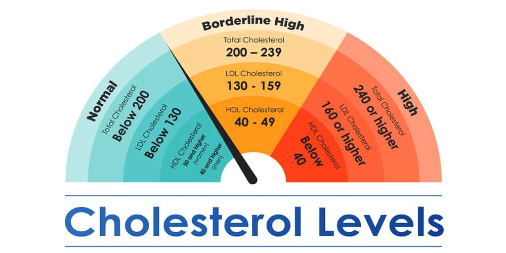 Why is it critical to closely monitor cholesterol levels