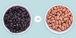 Black vs Pinto Beans
