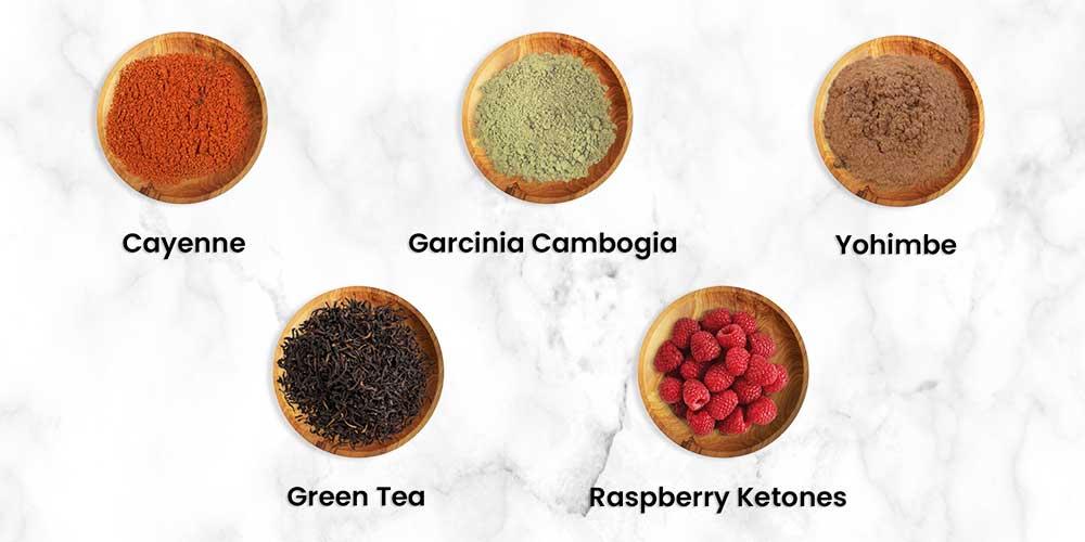 Vegan Fat Burners Ingredients