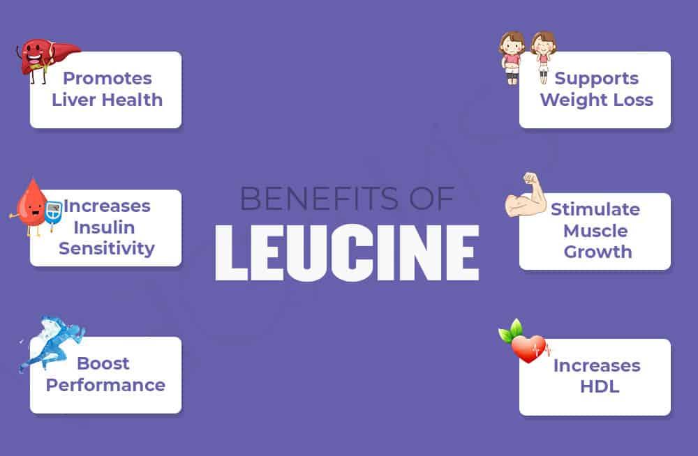 Benefits of Leucine