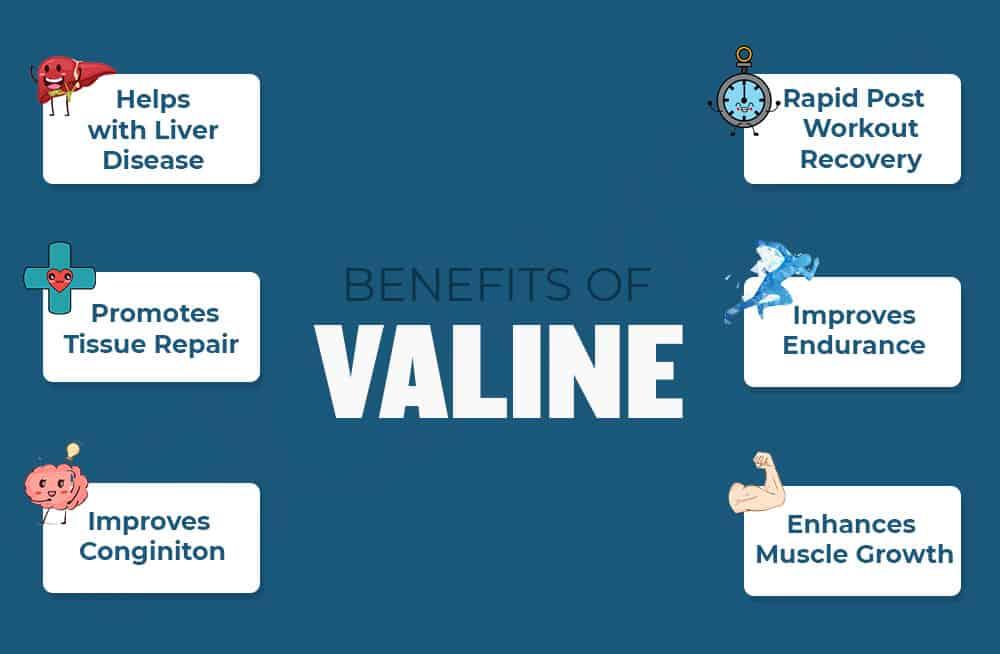 Benefits of Valine