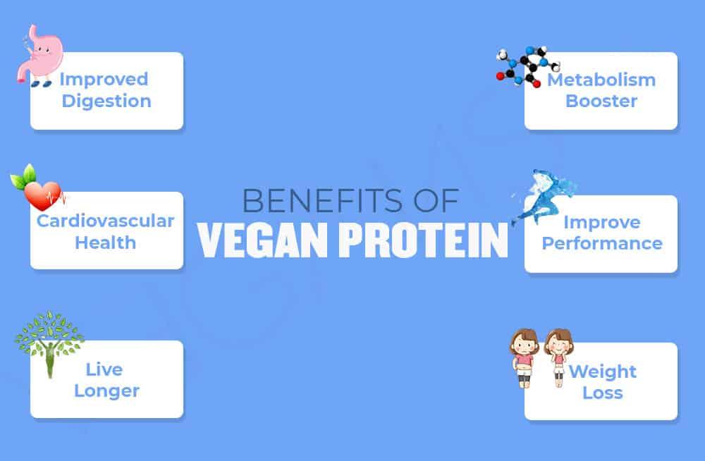 Benefits of Vegan Protein