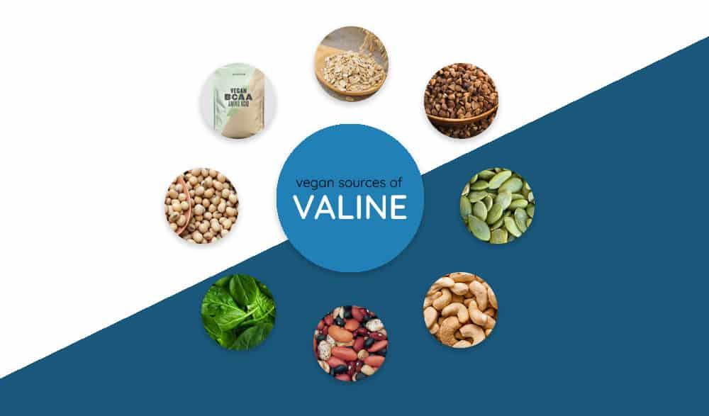 Best Sources of Valine for Vegans