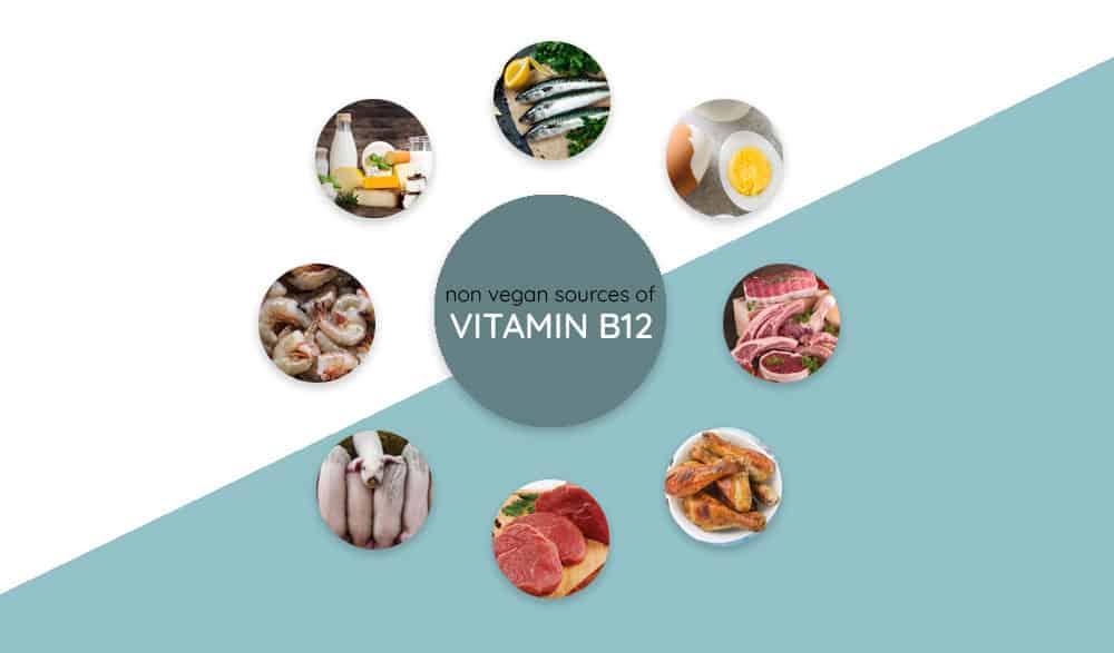 Non-vegan sources of vitamin b12