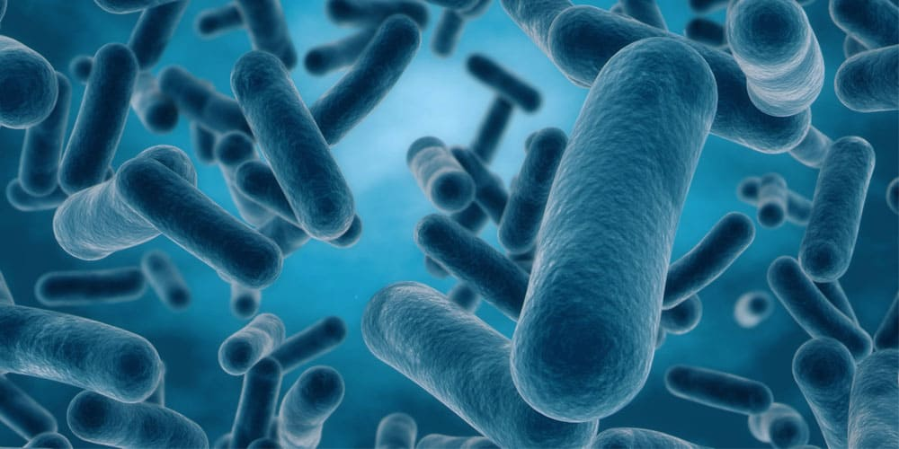 how do you know if probiotics are working
