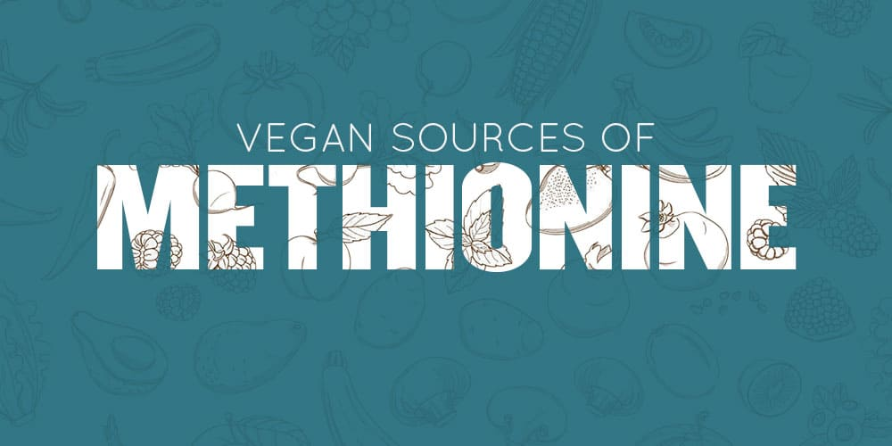 Vegan Methionine Sources