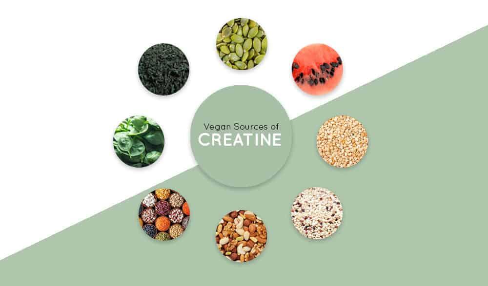 Vegan Sources of Creatine