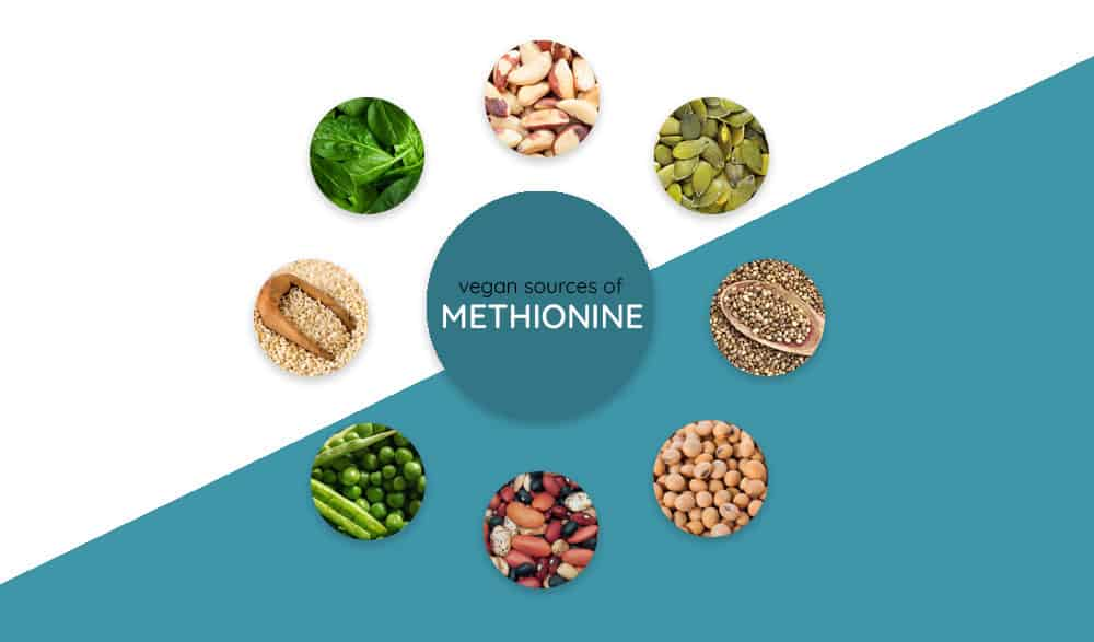 Vegan Sources of Methionine