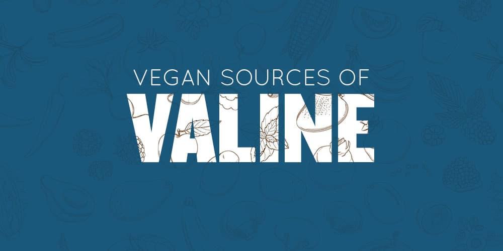 Vegan Sources of Valine