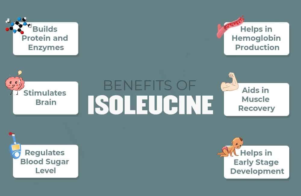 Benefits of Isoleucine