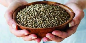 Is Hemp A Complete Protein