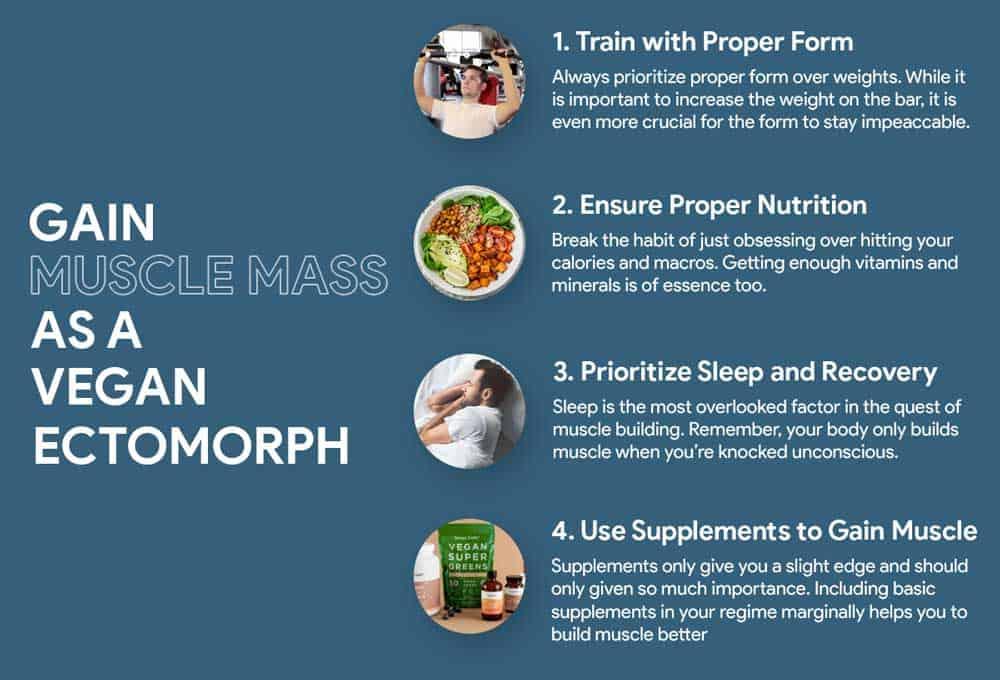 Gain Muscle As A Vegan Ectomorph