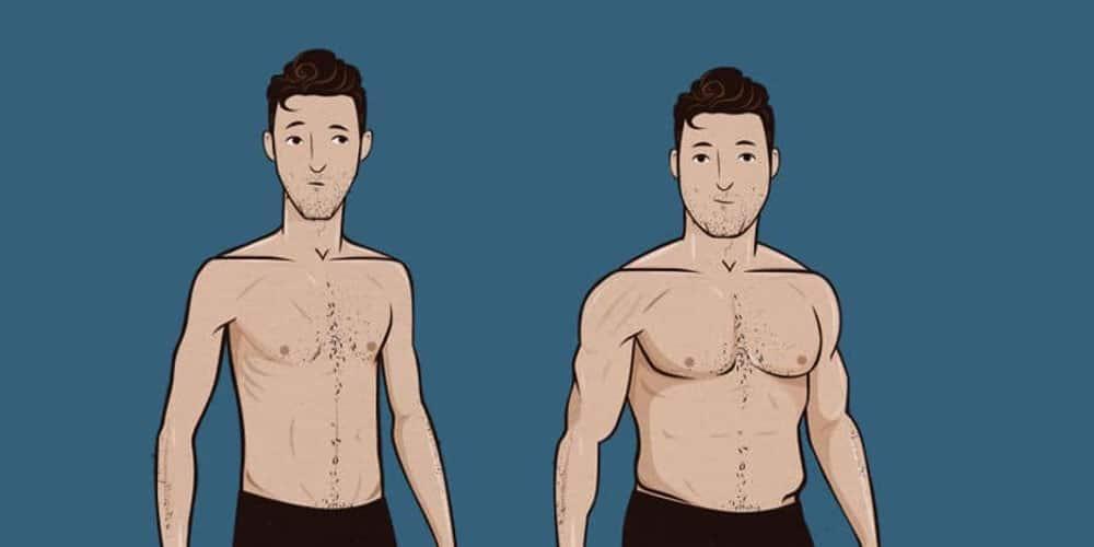 How To Gain Muscle Mass As A Vegan Ectomorph